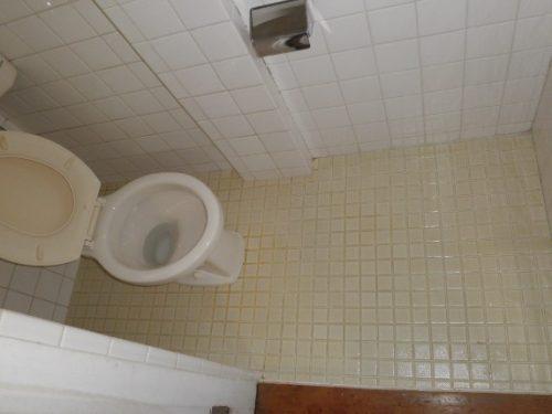 このトイレの特殊清掃は史上最もタフなミッション
