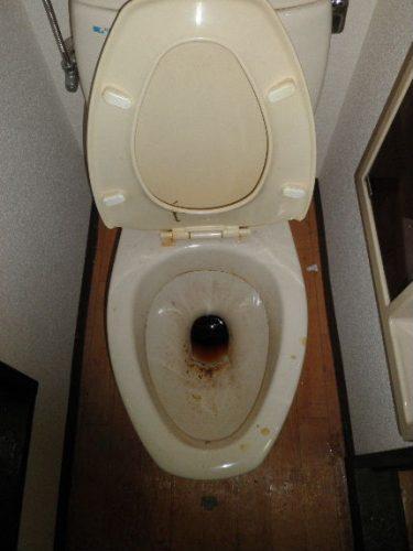 汚れたトイレ便器の特殊清掃業者 八尾市 トリプルエス