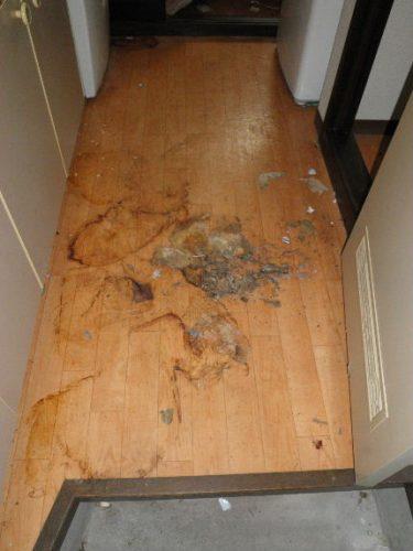 汚れがこびり付いた床のハウスクリーニング業者 東大阪市のトリプルエス
