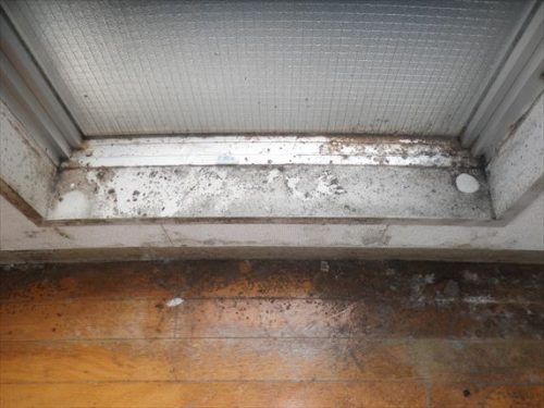湿気でカビだらけになっている窓周り