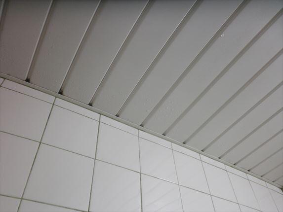 天井風呂A2