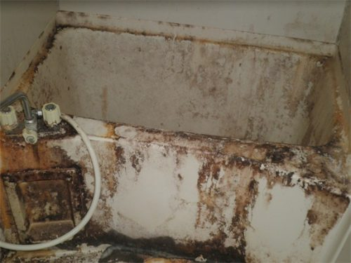 東大阪のゴミ屋敷のバスタブを特殊清掃で洗浄
