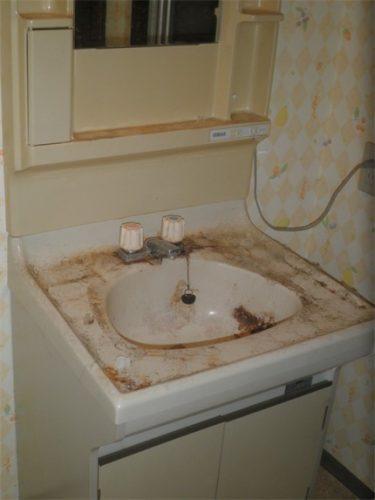 洗浄なしにまともに使用できる状態ではないゴミ屋敷の洗面所