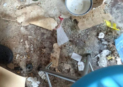 ネコに荒らされた床 最初の状況