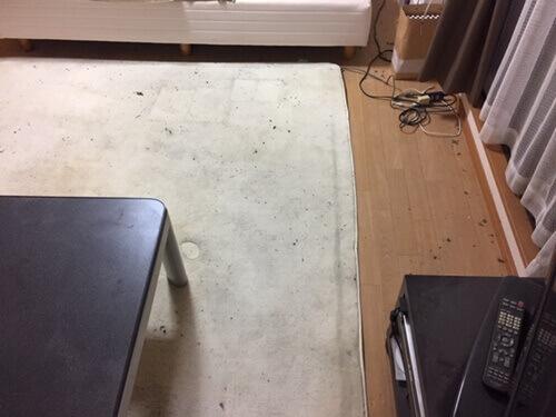 床面全ての導線がクッキリ