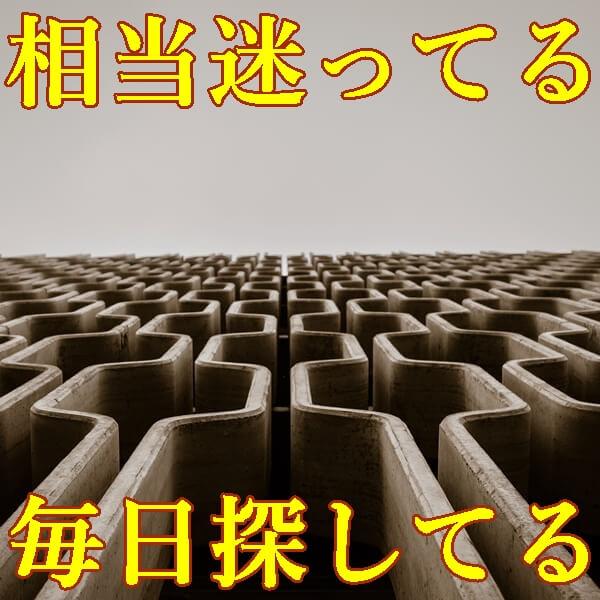 物が多すぎて片付けられない人のサポート業者 トリプルエス 大阪