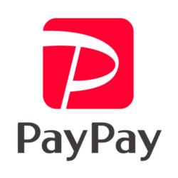 paypay決済